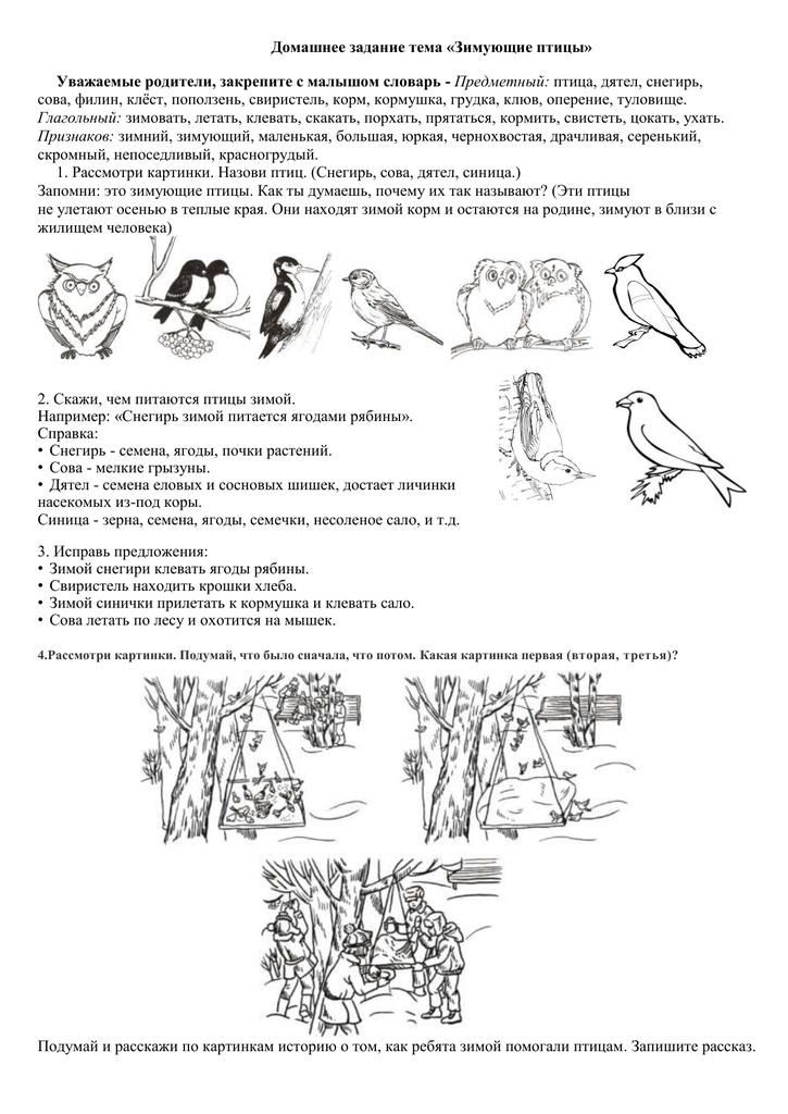 зимующие птицы задания для детей