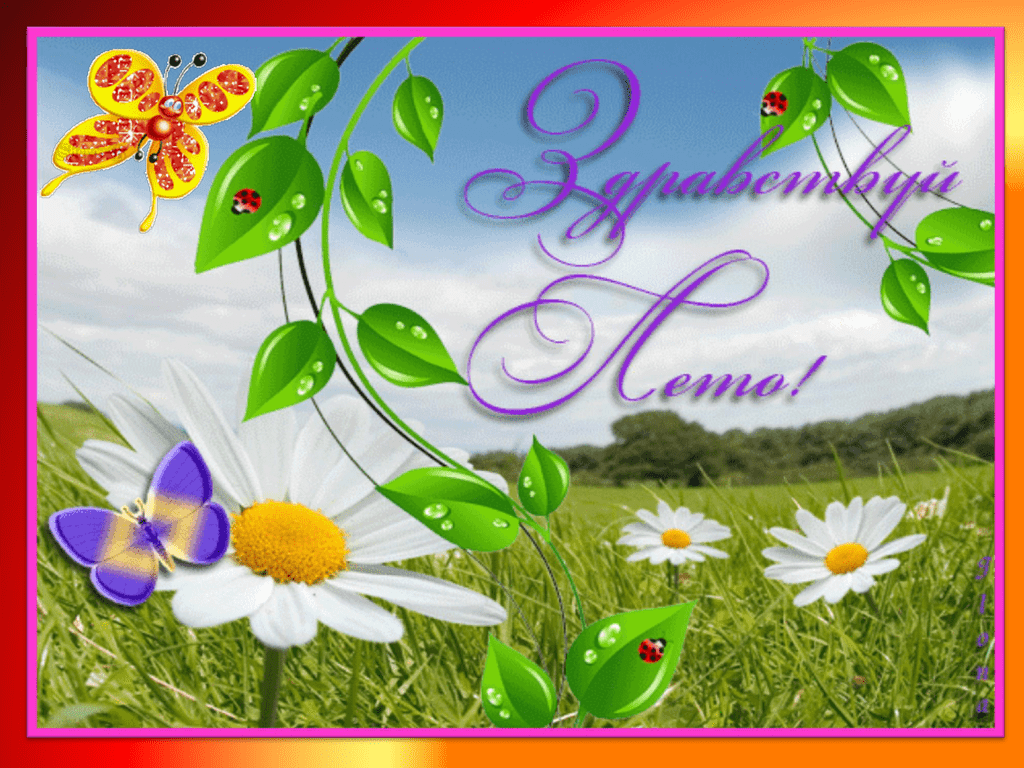 Красивые открытки здравствуй лето, февраля